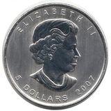 5 долларов 2007, серебро (Ag 999) | Зеленый кленовый лист — Канада, фото 1