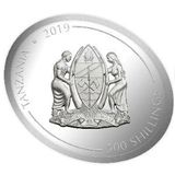 500 шиллингов 2019, серебро (Ag 925) | Свинья с бабочкой — Танзания, фото 1