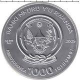 1000 франков 2009, серебро (Ag 925) | Рыбы — Руанда, фото 1