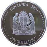 250 шиллингов 2020, серебро (Ag 925) | Крыса (полигональное изображение) — Танзания, фото 1