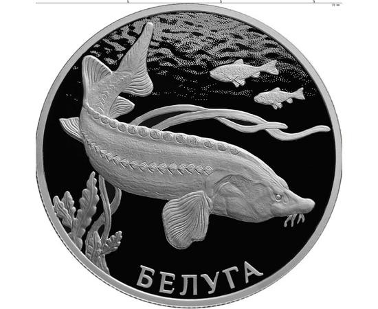 2 рубля 2019 Белуга, фото 1